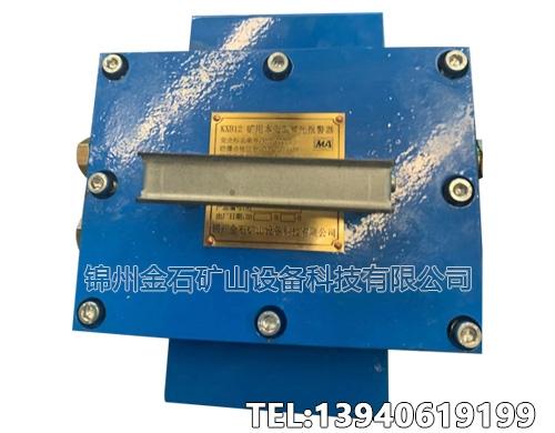 安徽矿用本安型声光报警器
